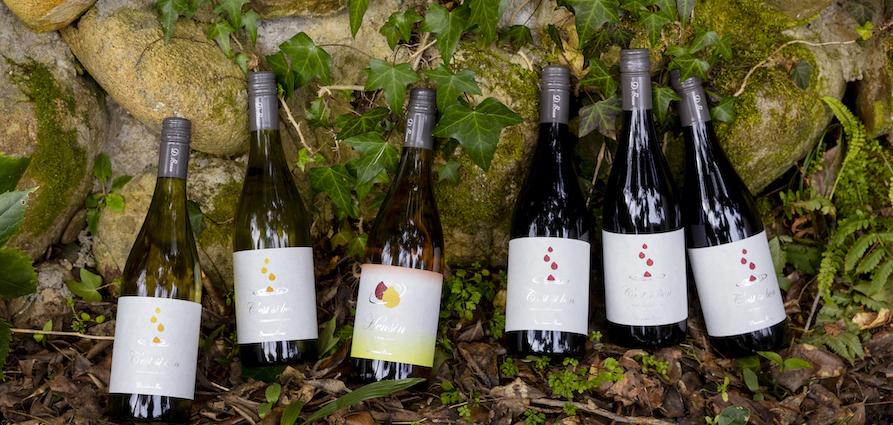 """""""Wine & Passion""""を掲げるワイナリー「ドメーヌボー」が初ヴィンテージワインを発売"""